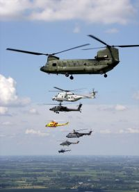 All helcipoters of the Defence Helicopter Command together; the Chinook, NH-90, Apache, AB-412SP, Cougar, Lynx and Alouette III.